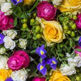 Abstract background of flowers Stock Photos