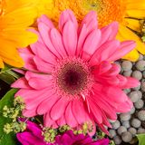 Abstract background of flowers Stock Photo
