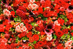Abstract background of flowers Stock Images