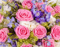 Abstract background of flowers. Close-up Stock Photos