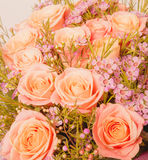 Abstract background of flowers. Close-up Royalty Free Stock Photos