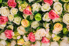 Abstract background of flowers Royalty Free Stock Images