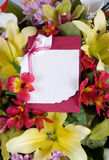 Abstract background of flowers. Greeting card. Stock Photo
