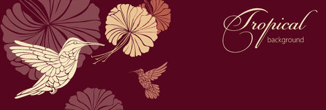Abstract background with flowers. And hummingbirds, against a dark background vector illustration