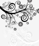 Abstract background - flowers and the nature. Collection abstract a backgrounds - silver flowers Stock Image