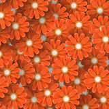 Abstract background of flowers. Abstract orange flowers background. Close-up vector illustration Stock Photography