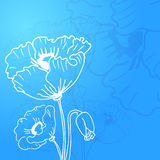 Abstract background of flowers poppies. A Place in the text - vector illustration for ethnic creative design projects Stock Illustration