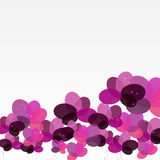 Abstract background with Flowers. Vector Illustration. EPS10 Royalty Free Stock Images