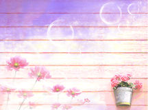 Abstract background. Flowers on wooden wall - eps10 Stock Photos