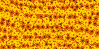 Abstract background, flowers. Abstract background, yellow and orange flowers Royalty Free Stock Photography