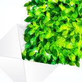 Abstract background of flying leaves. Royalty Free Stock Photo