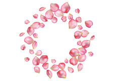 Abstract background with flying pink rose petals. Royalty Free Stock Photography