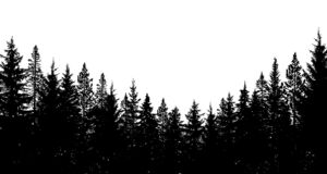 Free Abstract Background. Forest Wilderness Landscape. Pine Tree Silhouettes. Vector Illustration. Stock Photos - 188922763