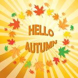 Abstract  background with frame of leaves - vector hello autumn. Abstract  background with frame of leaves -  vector hello autumn Royalty Free Stock Photos