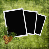 Abstract background with frames and pinecones Royalty Free Stock Photo