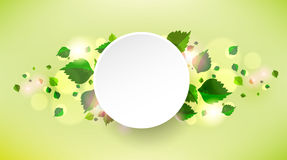 Abstract background with fresh green leaves. Vector Royalty Free Illustration
