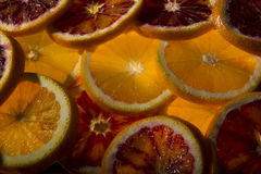 Abstract Background with Fresh Juicy Orange Back lit Slices Stock Images