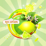Abstract background with fresh lemon. Flowers and lemon slice royalty free illustration
