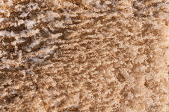 Abstract background frost  sand Stock Image