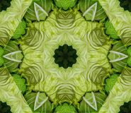 Abstract background with geometric kaleidoscopic design obtained from green cabbage heads at the farmer`s market royalty free illustration