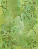 Abstract Background with Ginkgo Leaves in Green Stock Photo