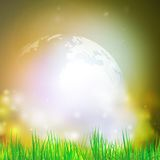 Abstract background of globe with grass vector. Illustration.View at our home from other side Royalty Free Stock Image