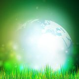 Abstract background of globe with grass vector. Illustration.View at our home from other side Royalty Free Stock Photography