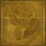 Abstract background with golden frame. And beautiful rose Royalty Free Stock Photography