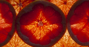 Abstract background of grapefruit Stock Images