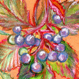 Abstract background with grapes. Fragment original painting. Texture of oil pastel. Handmade coloring. Painted paper Stock Photos