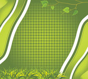 Abstract background with grass and birch branch. Illustration Royalty Free Stock Images
