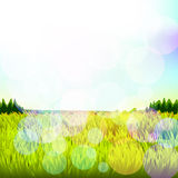 Abstract background with grass and bokeh. Raster. 3 Royalty Free Stock Images