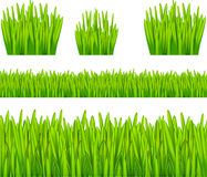 Abstract Background with Grass. Vector illustration Royalty Free Illustration