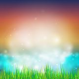 Abstract background with grass vector illustration. Vector design for print or web Stock Images