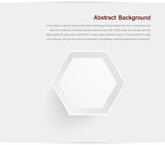 Abstract background. Gray hexagon. White and shadow vector illustration