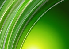 Abstract background green. Lines pattern Stock Photos