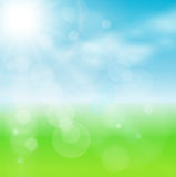 Abstract background green. Light and sunny Royalty Free Stock Photography