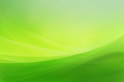 Abstract background green. Designed by foxaon from thailand royalty free illustration