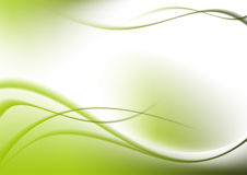Abstract background green curves Royalty Free Stock Image