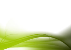 Abstract background green curves Stock Photo