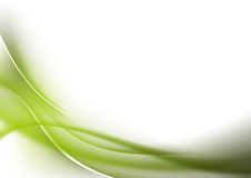 Abstract background green curves. Abstract background and green curves stock illustration