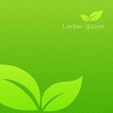 Abstract background green ecology concept with stripe element ve Stock Image