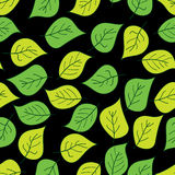 Abstract background of green leaf. Seamless pattern. Vector illustration Stock Photo