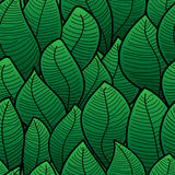 Abstract background of green leaf Royalty Free Stock Photography