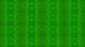 Abstract background of green leaf sample stock photo