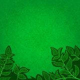 Abstract background with green leaves and scratch. Ecology abstract background for invitations with green leaves and scrathes royalty free illustration