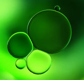 Abstract background green Royalty Free Stock Photo