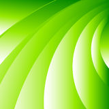 Abstract background green. Stock Images