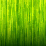 Abstract background green texture. Abstract background green lines pattern texture. Vector illustration Stock Photography