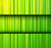 Abstract background green texture. Abstract background green lines pattern texture. Vector illustration Stock Image